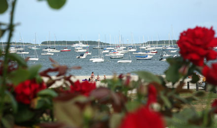 Boats in Hyannis Inner Harbor